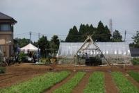 ステージは山武の間伐材を使用しています。