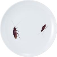 ゴキブリ皿