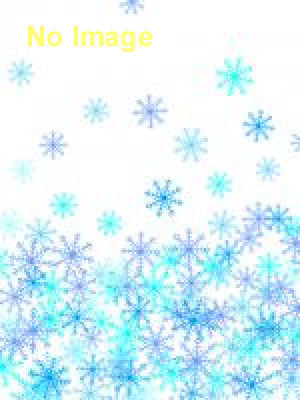 冬の超B級スポーツフェス In 星野リゾートアルツ磐梯