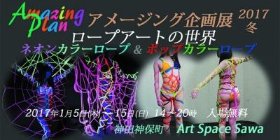 アメージング企画展 ロープアートの世界