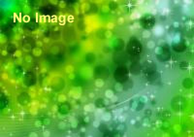 「井の頭千人茶会 Green Tea Picnic」キックオフイベント