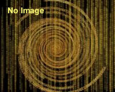 「オメロ触覚美術館の実践活動」講演会