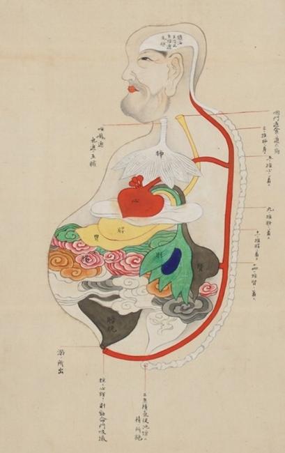 「五臓六腑」の画像検索結果
