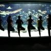 サンシャイン女子道企画『サンシャインシティでヨガ!』