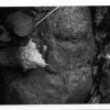 太田 全治 写真展「石は妖精」