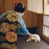 岩合光昭写真展「ねこの京都」(東京開催)