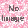 第37回各務原市桜まつり「20万人の広場」