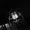 博物館明治村×リアル脱出ゲーム 大逆転裁判『容疑者 夏目漱石失踪事件』