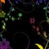 雛菜雛子展「ヒナコルメルと地下少女館(飼育室)」
