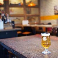 こたつで乾杯!ビール女子新年会