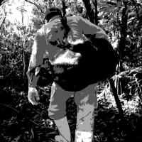 猟師たちが語る奇妙な体験『山怪』