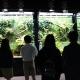 自然を切り取った「生きたアート」を見つめる展示 『天野尚ネイチャーアクアリウム展』