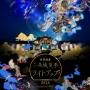 二条城夏季ライトアップ2018 -Directed by NAKED-