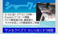 シャークイズ 鮫とクイズの1時間