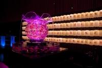 花魁 巨大金魚鉢