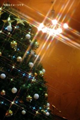 クリスマスツリーの焼却(Xmas Tree Buring):オランダ