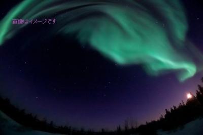 オーロラ・フェスティバルThe Northern Lights Festival(Nordlysfestivalen):ノルウェー