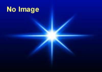 アイソン彗星の観察 六本木ヒルズ 東京シティビュー 「スカイデッキ」