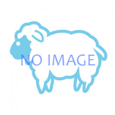 ザ・ミッドナイトサスペンス2012 『あるむない 「同窓会」』 探偵=夜十苅剛(やどかりたけし)事件ファイル#16