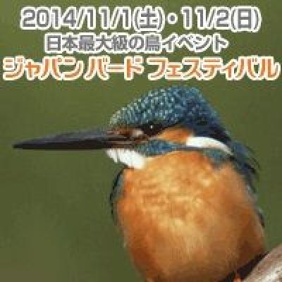 ジャパン・バード・フェスティバル2014