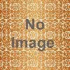 鳥取砂丘 砂の美術館 砂で世界旅行・東南アジア編~王朝の栄華とよみがえる神秘の国々~